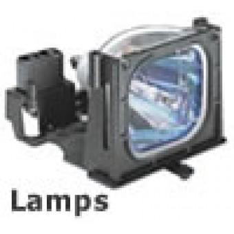 Bóng đèn máy chiếu Mini Optoma ML750